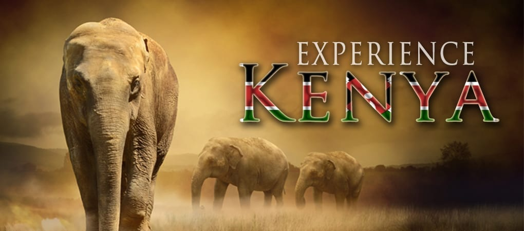 Experience Kenya
